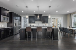 interior photo gourmet kitchen